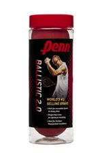 Penn Ballistic (2.0) 3/Ball Can