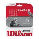 Wilson Stamina String